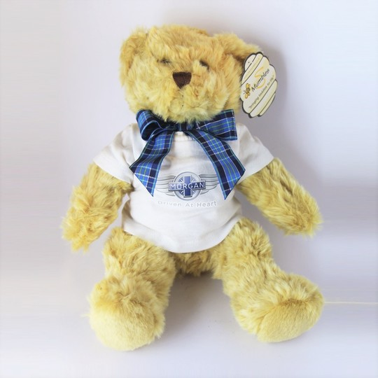 Teddy bear with white shirt